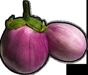 melanzane, immagine a lato testo condimenti-e-farciture