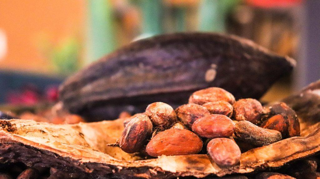 Cacao - Soffio di Grano & Curiosità- Edizione limitata - Marzo 2020